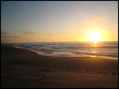 Photo of setting sun, near Abbott's Lagoon, Pt. Reyes National Seashore
